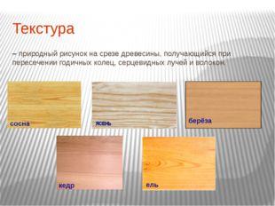 Текстура – природный рисунок на срезе древесины, получающийся при пересечении