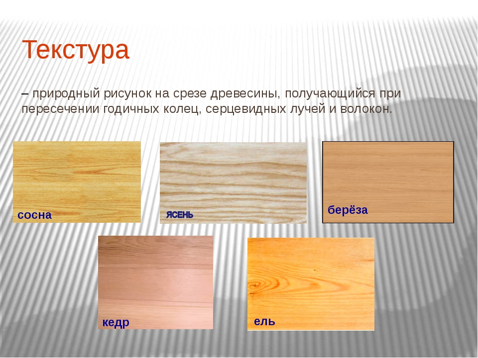 Текстура – природный рисунок на срезе древесины, получающийся при пересечении...