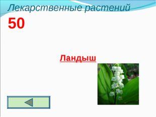 Лекарственные растений 50 Ландыш