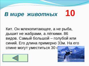 В мире животных 10 Кит. Он млекопитающее, а не рыба, дышит не жабрами, а лёгк