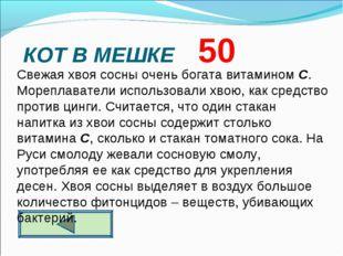 КОТ В МЕШКЕ 50  Свежая хвоя сосны очень богата витамином С. Мореплаватели