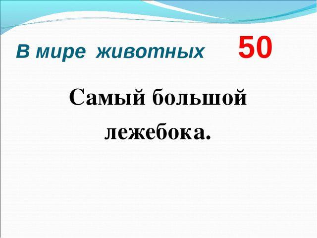 В мире животных 50 Самый большой лежебока.
