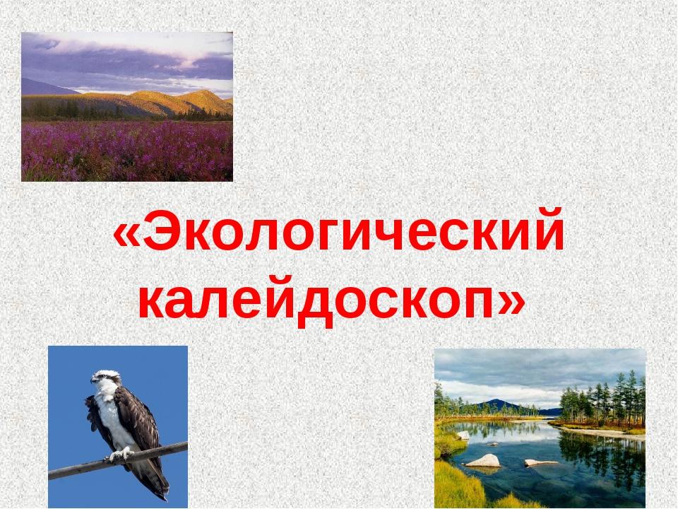 «Экологический калейдоскоп»