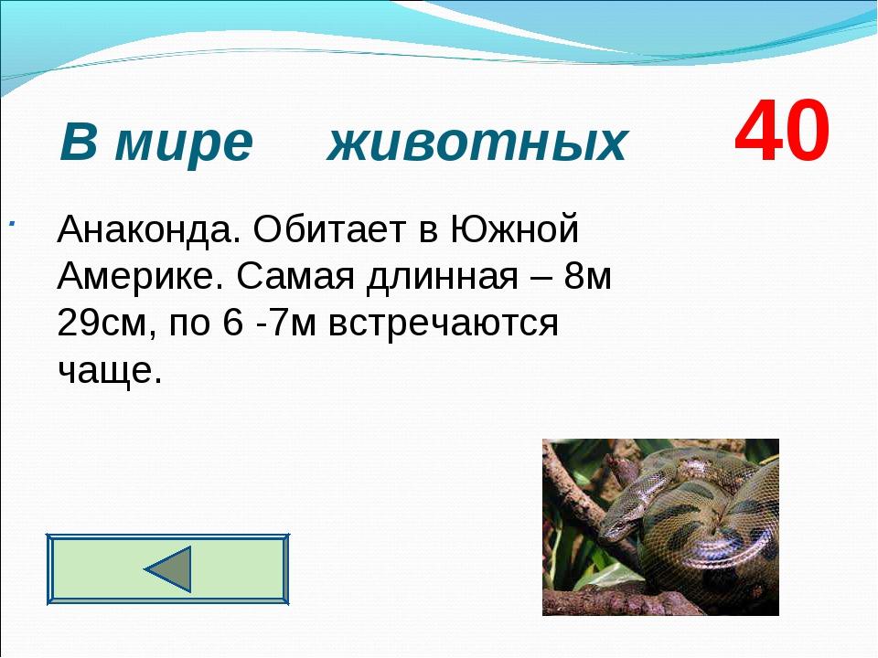 В мире животных 40 . Анаконда. Обитает в Южной Америке. Самая длинная – 8м 2...