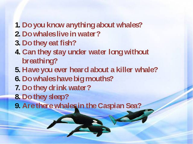 Do you know anything about whales? Do whales live in water? Do they eat fish?...