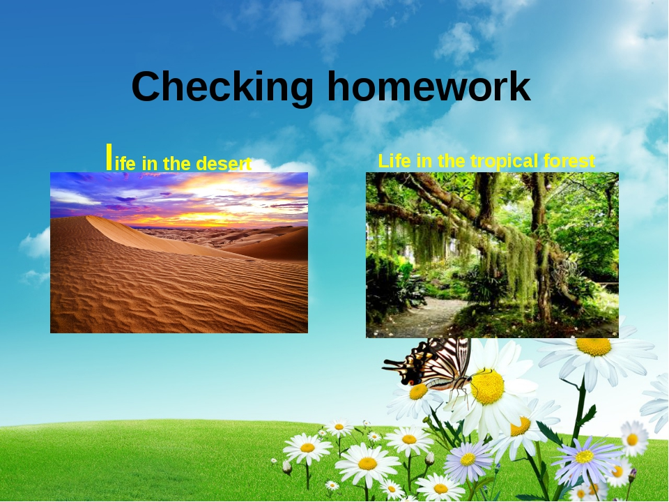 Checking homework life in the desert Life in the tropical forest