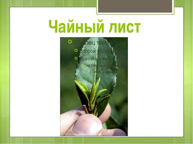 Чайный лист