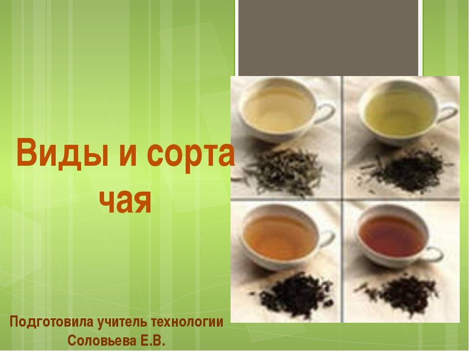 Подготовила учитель технологии Соловьева Е.В. Виды и сорта чая