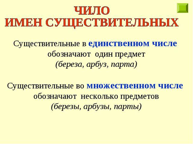 Существительные в единственном числе обозначают один предмет (береза, арбуз,...