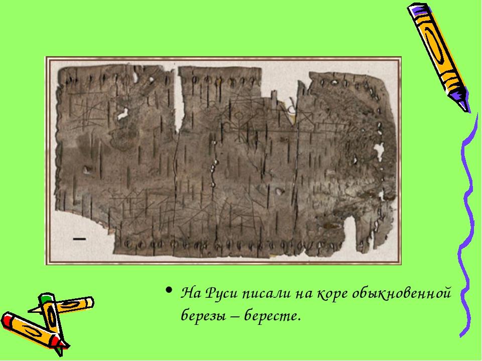 На Руси писали на коре обыкновенной березы – бересте.