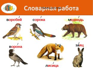 воробей сорока заяц лисица ворона медведь