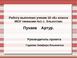 Работу выполнил ученик 10 «Б» класса МОУ гимназии №1 с. Эльхотово Пухаев Арт
