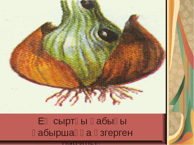 Ең сыртқы қабығы қабыршаққа өзгерген пиязшық