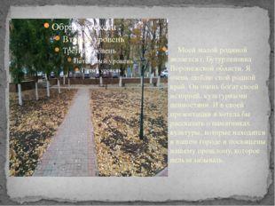 Моей малой родиной является г. Бутурлиновка Воронежской области. Я очень люб