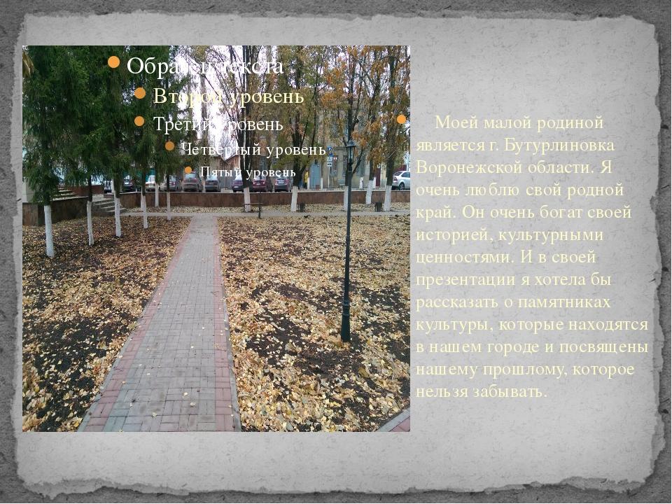 Моей малой родиной является г. Бутурлиновка Воронежской области. Я очень люб...