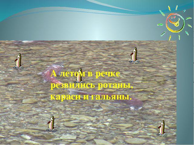 А летом в речке резвились ротаны, караси и гальяны.
