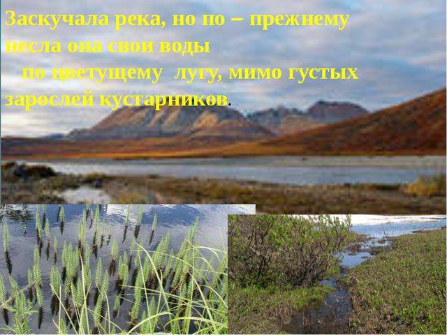 Заскучала река, но по – прежнему несла она свои воды по цветущему лугу, мимо...