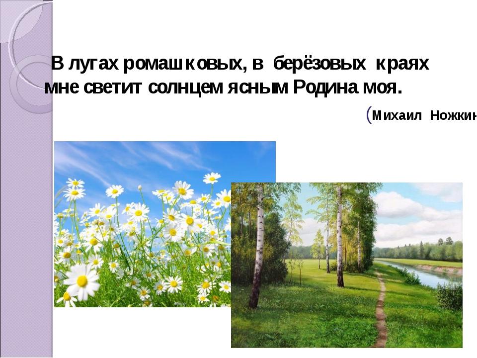 В лугахромашковых, в берёзовых краях мне светит солнцем яснымРодина моя....