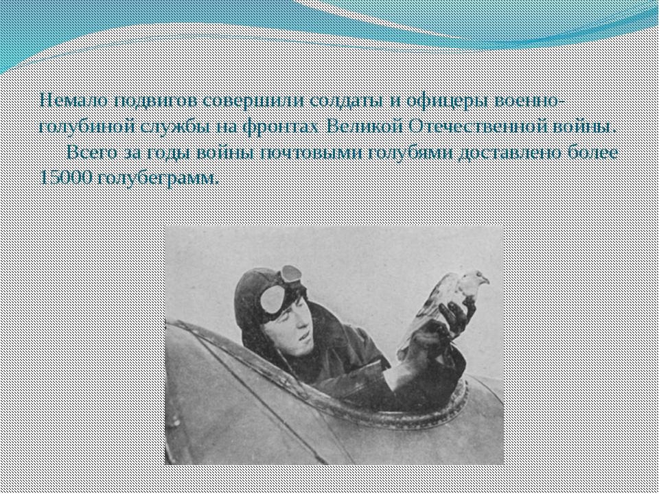 Немало подвигов совершили солдаты и офицеры военно-голубиной службы на фронт...