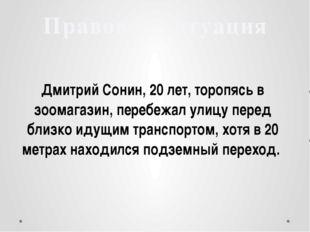 Дмитрий Сонин, 20 лет, торопясь в зоомагазин, перебежал улицу перед близко и