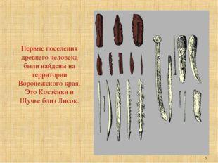 Первые поселения древнего человека были найдены на территории Воронежского кр