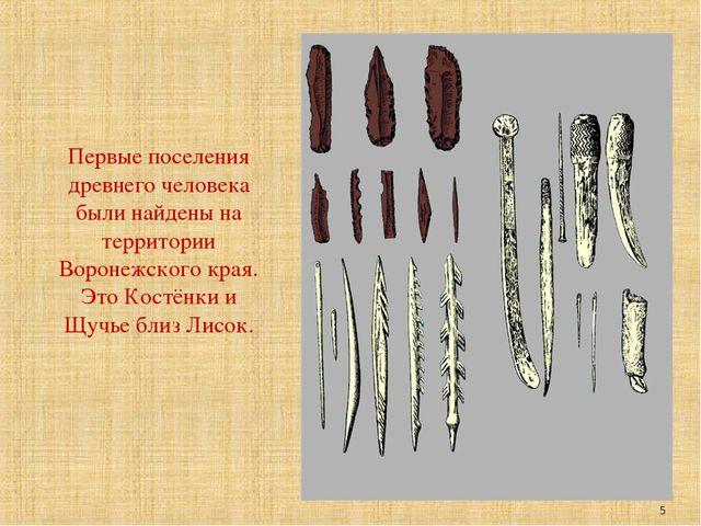 Первые поселения древнего человека были найдены на территории Воронежского кр...