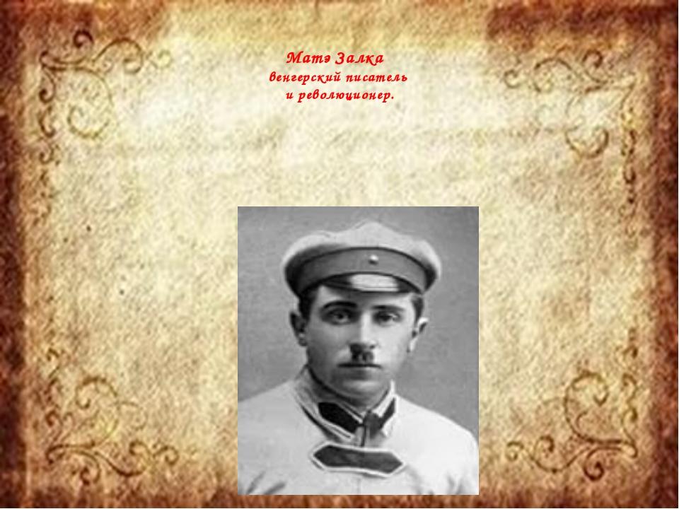 Матэ Залка венгерский писатель и революционер.