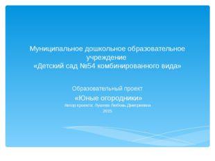 Муниципальное дошкольное образовательное учреждение «Детский сад №54 комбинир