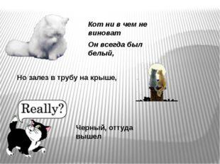Кот ни в чем не виноват Он всегда был белый, Но залез в трубу на крыше, Черны