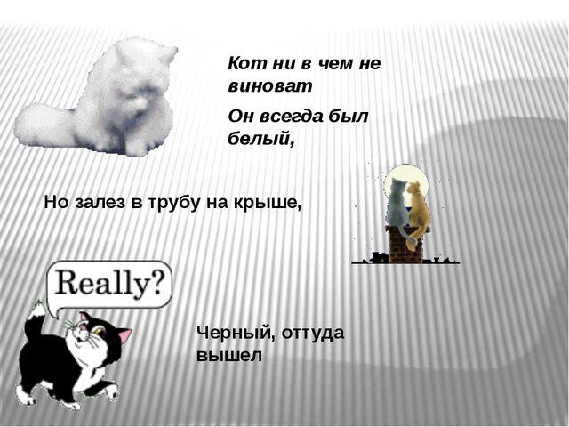 Кот ни в чем не виноват Он всегда был белый, Но залез в трубу на крыше, Черны...