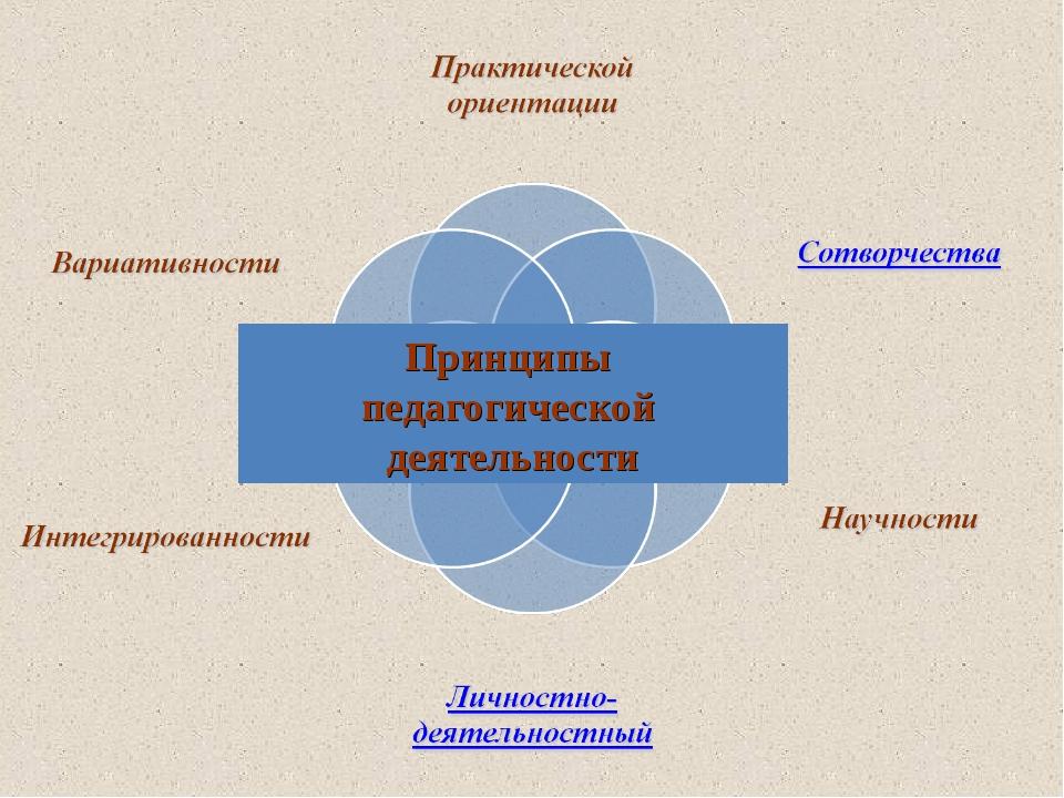 Принципы педагогической деятельности