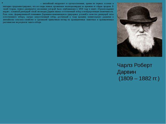 Чарлз Ро́берт Да́рвин — английский натуралист и путешественник, одним из перв...