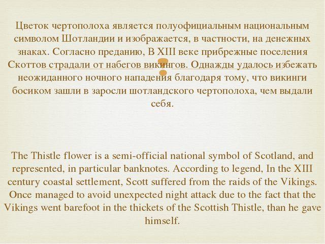 Цветок чертополоха является полуофициальным национальным символом Шотландии и...