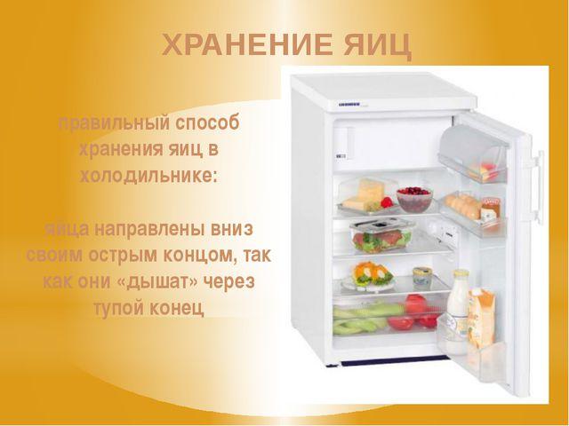 правильный способ хранения яиц в холодильнике: яйца направлены вниз своим ост...