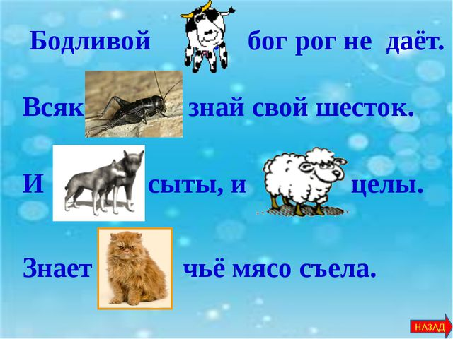 В русском языке есть пословицы и поговорки, где встречаются числа. Вставьте...