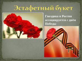 Гвоздика в России ассоциируется с днём Победы