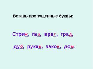 Вставь пропущенные буквы: Стри_, га_, вра_, гра_, ду_, рука_, зако_, до_. ж з