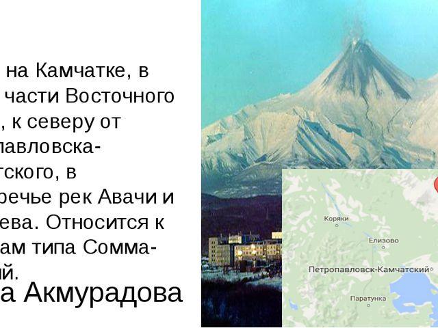 Ава́чинская со́пка (Ава́ча) — действующий вулкан на Камчатке, в южной части В...