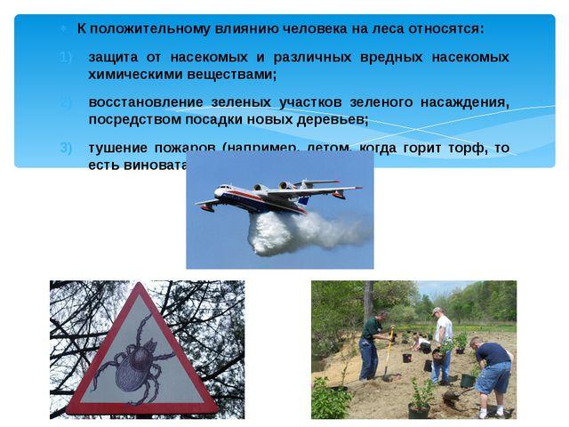 К положительному влиянию человека на леса относятся: защита от насекомых и ра...