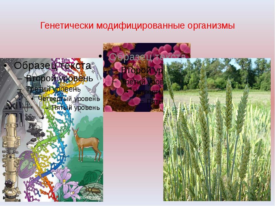 Генетически модифицированные организмы