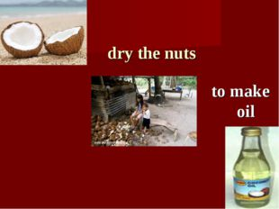dry the nuts to make oil