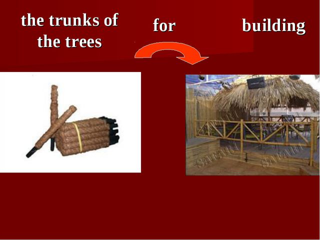 the trunks of the trees for building