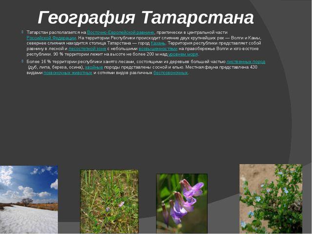 География Татарстана Татарстан располагается наВосточно-Европейской равнине,...