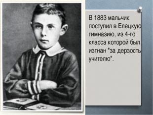 В 1883 мальчик поступил в Елецкую гимназию, из 4-го класса которой был изгнан