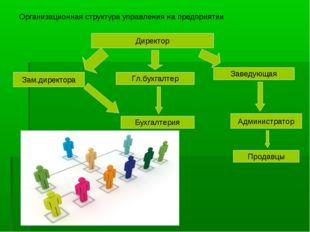 Организационная структура управления на предприятии Директор Зам.директора Гл