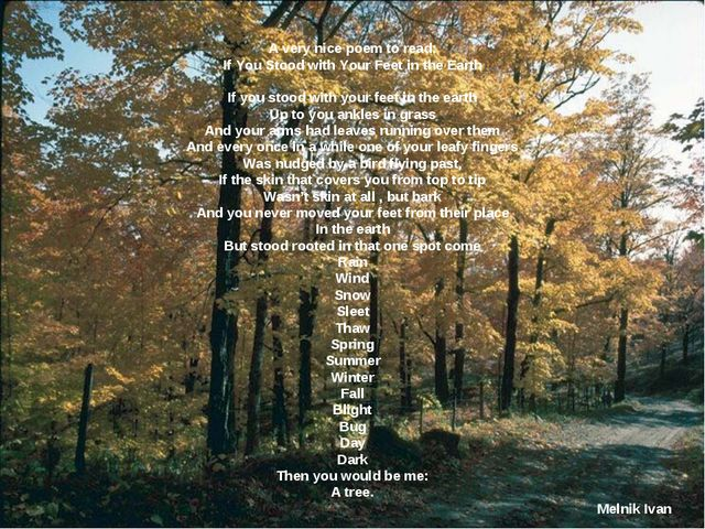 A very nice poem to read: If You Stood with Your Feet in the Earth   If you s...