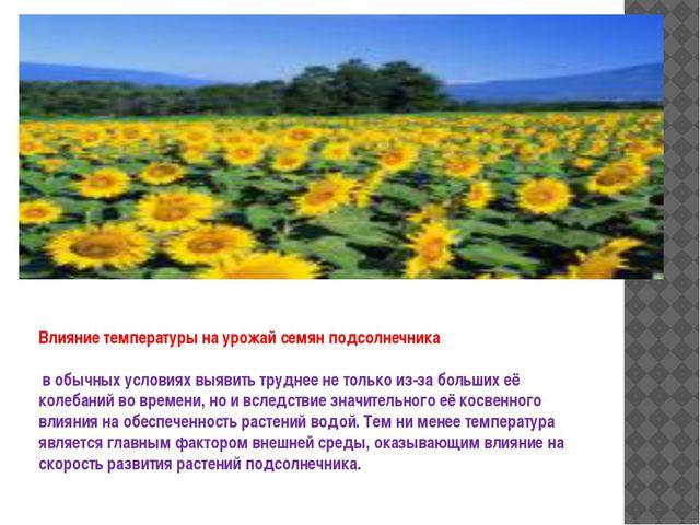 Влияние температуры на урожай семян подсолнечника в обычных условиях выявить...
