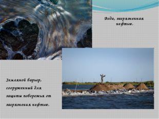 Вода, загрязненная нефтью. Земляной барьер, сооруженный для защиты побережья