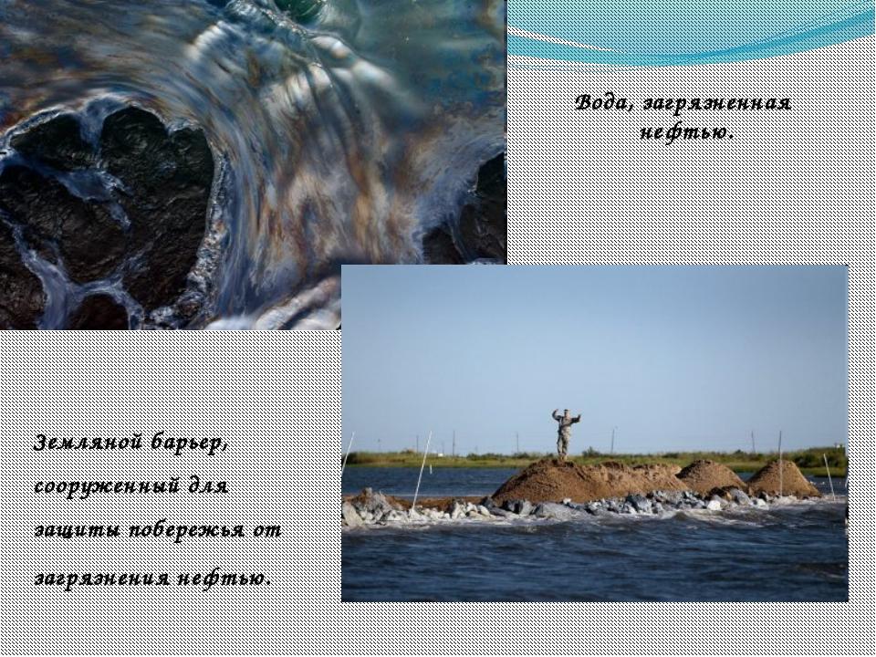 Вода, загрязненная нефтью. Земляной барьер, сооруженный для защиты побережья...