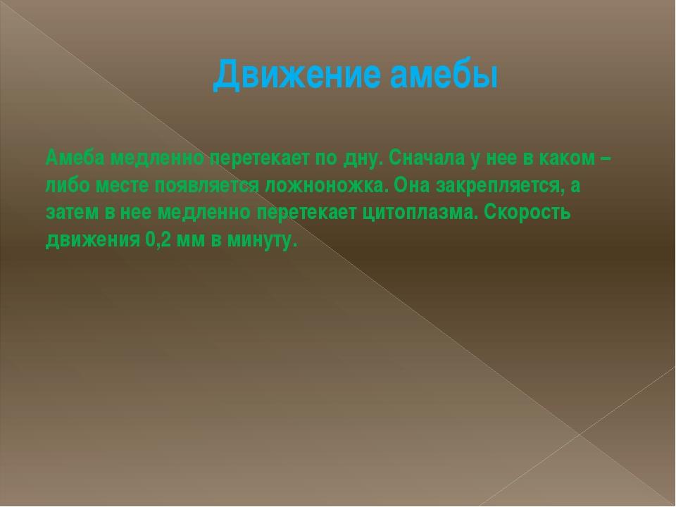 Движение амебы Амеба медленно перетекает по дну. Сначала у нее в каком – либо...
